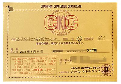 CCカード